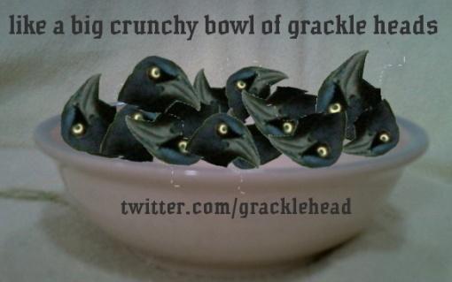 twitter.com/gracklehead