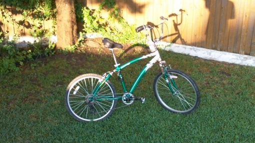 green next avalon bicycle